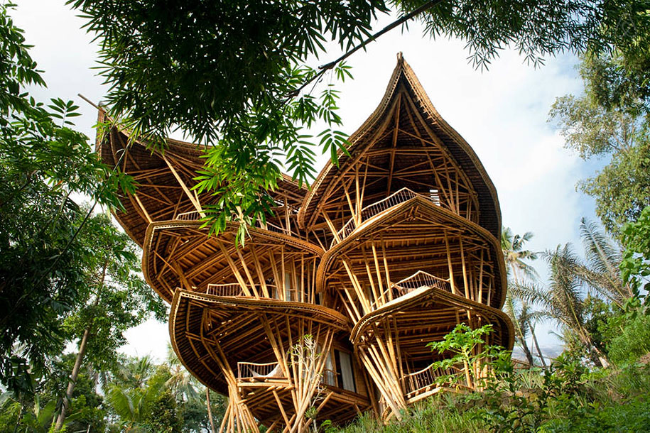 creative house built in jungle in Indonesia