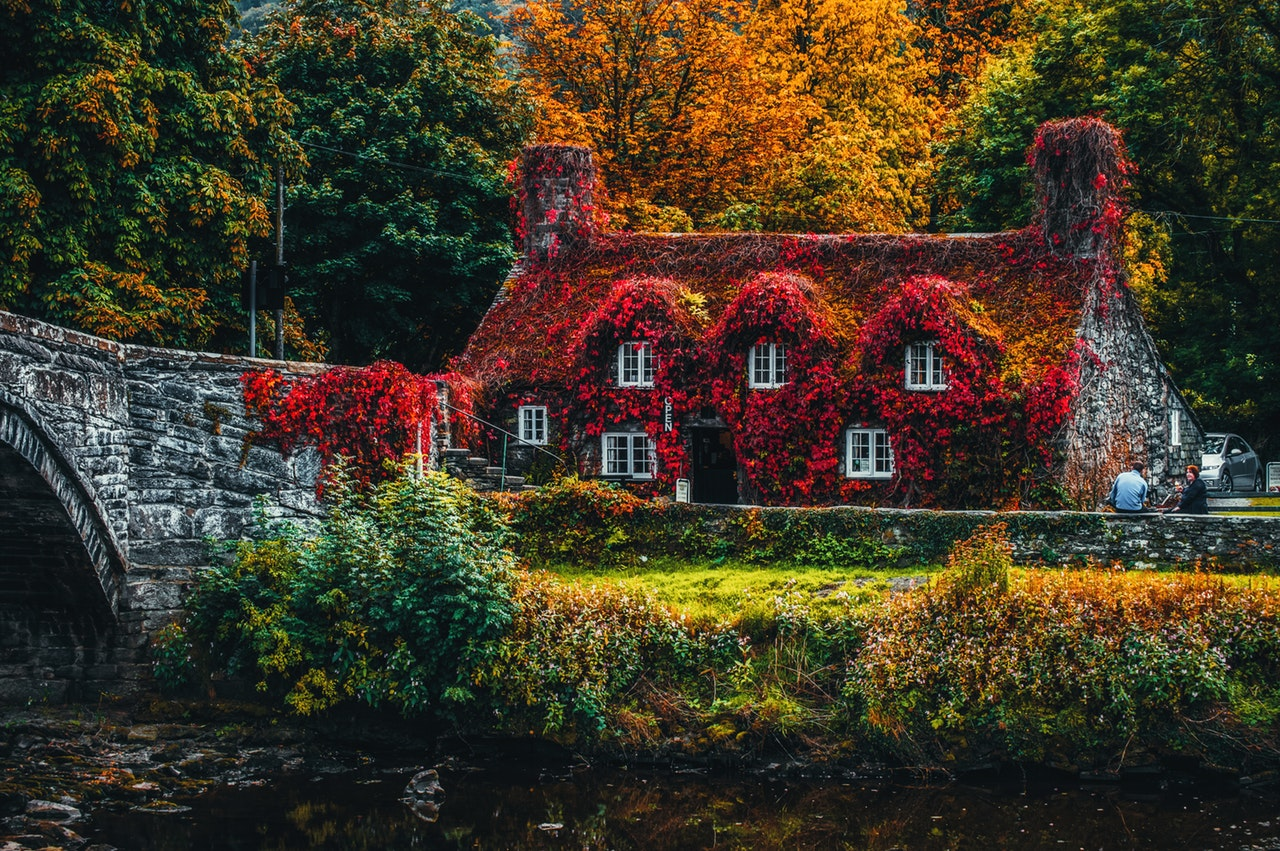 stone house in the forest covered by red vines and flowers