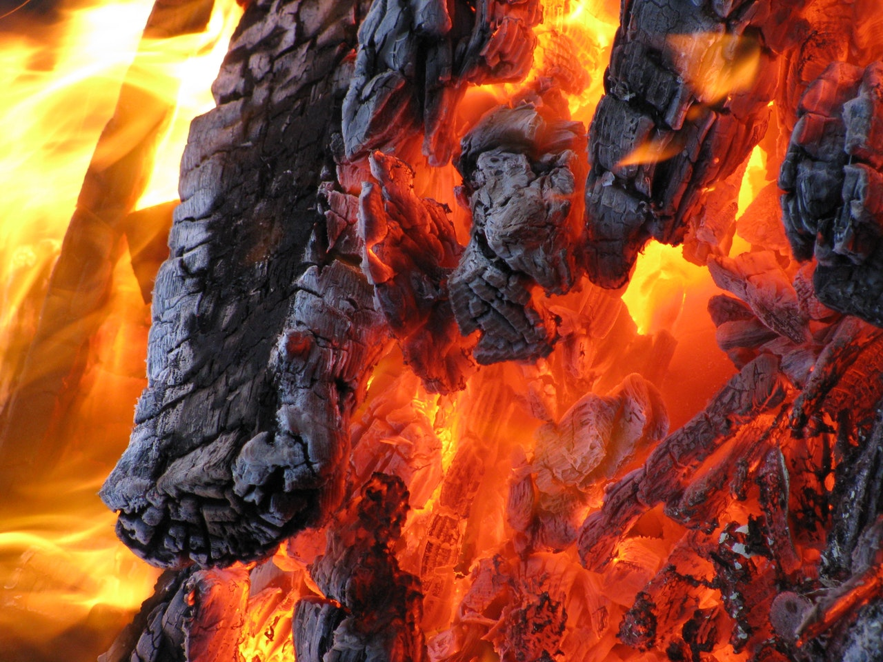 close up of fire burning wood