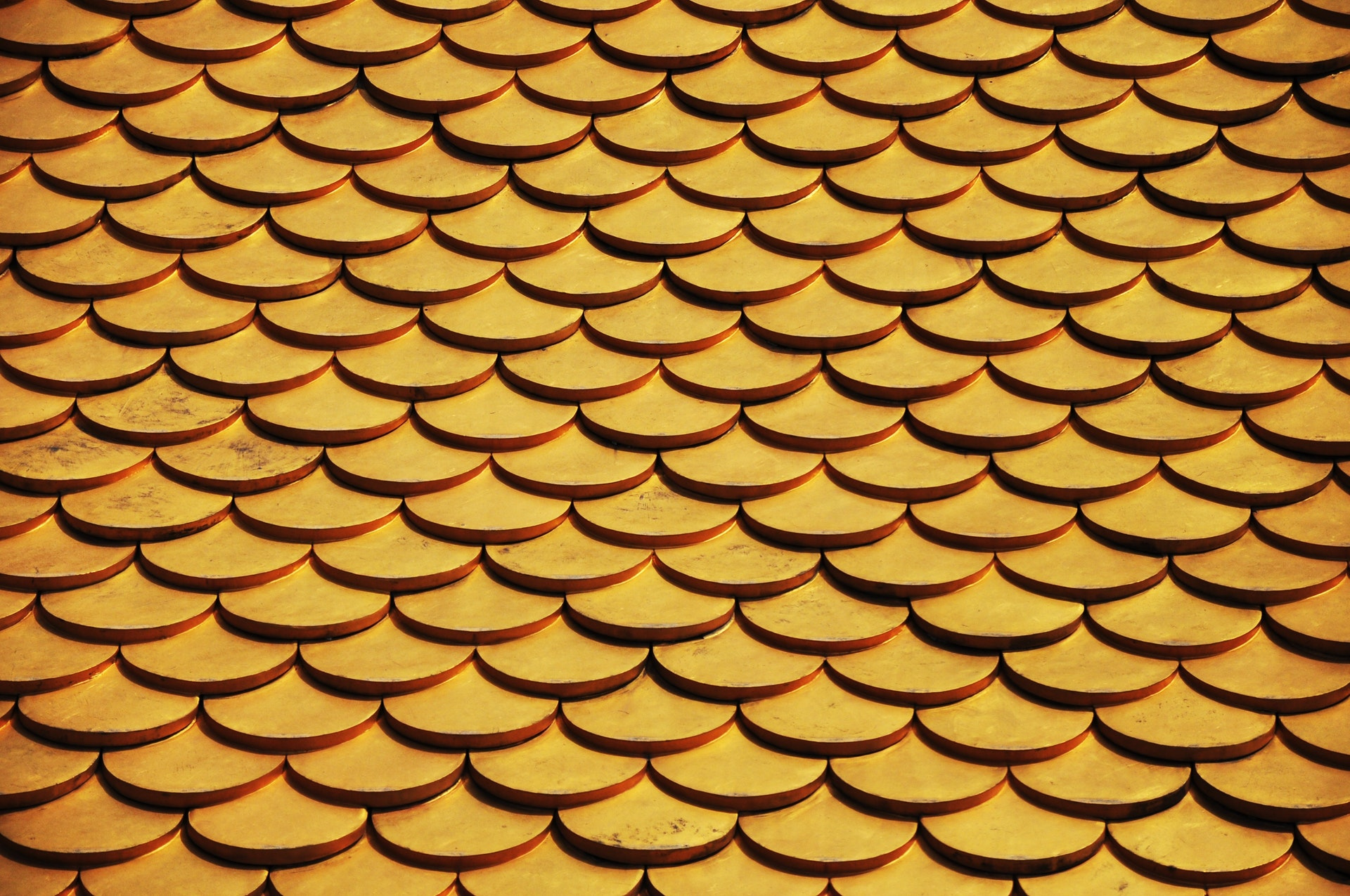 golden round shingles on roof